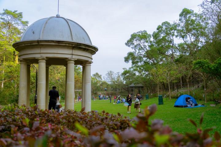 山頂公園,涼亭,野餐